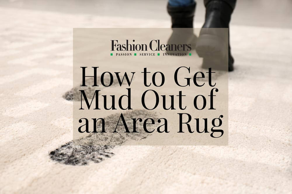 Area Rug Cleaning: How to Get Mud Out of an Area Rug