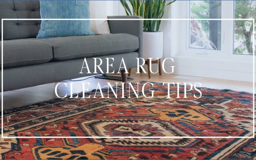 Area Rug Care and Cleaning Tips