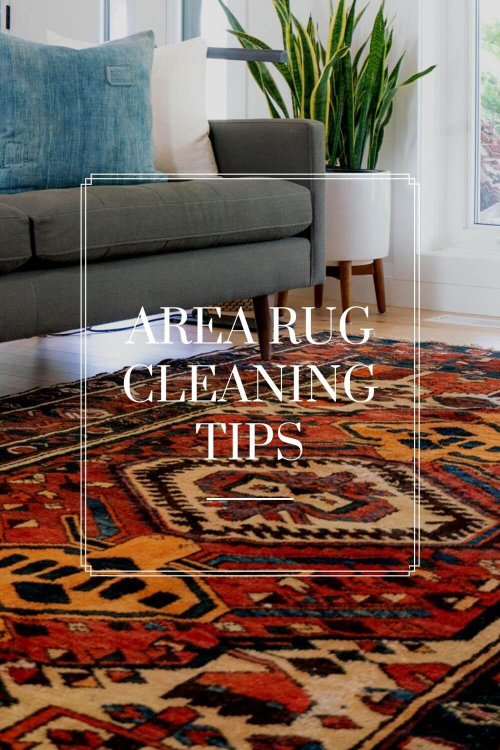 Area Rug Cleaning Tips by Fashion Cleaners