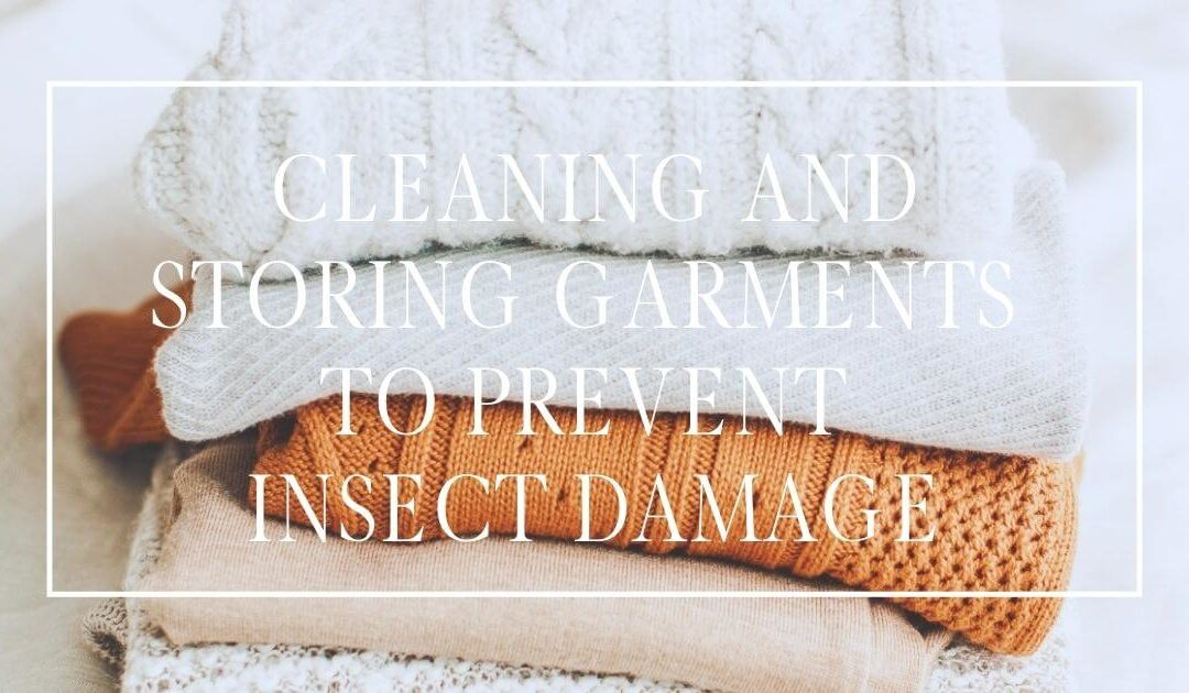 Prevent Insect Damage to Garments with Proper Cleaning and Storing